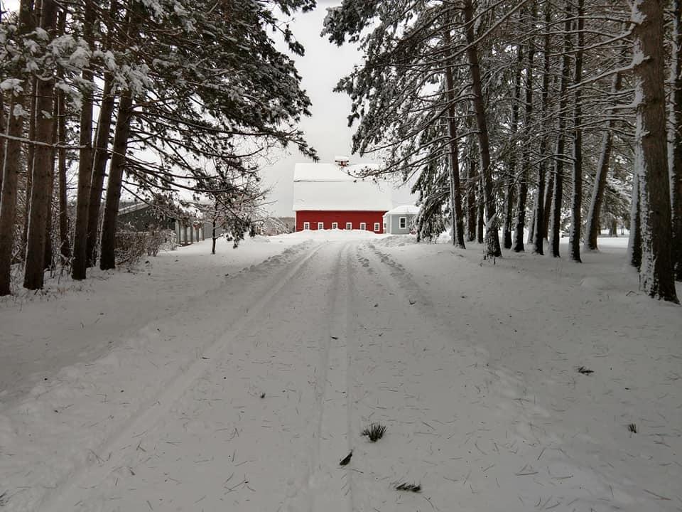 Barn 2019 - December snows