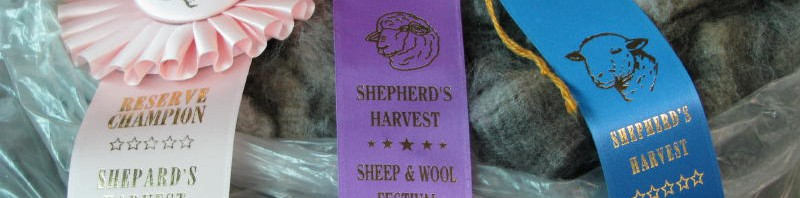 Fleece Competition Awards